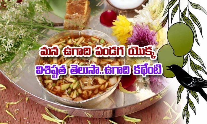 Importance Of Telugu Ugadi Festival
