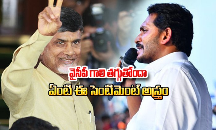 Is Chandrababu Naidu Sentiment Workouts In Ap Elections