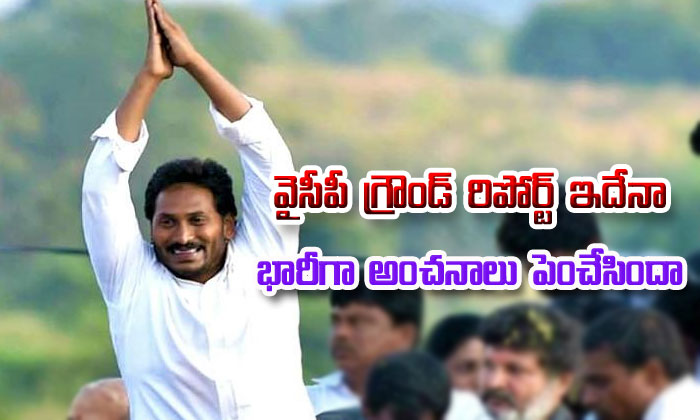 Ysrcp Ground Report About Elections