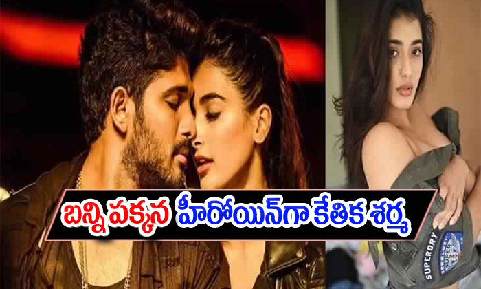 TeluguStop.com - Allu Arjun Romance Next With Ketika Sharma