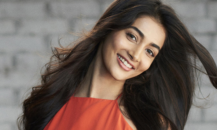 పూజా హెగ్డే కెరీర్ ఖతమేనా… ఐరెన్ లెగ్ ముద్ర-Movie-Telugu Tollywood Photo Image