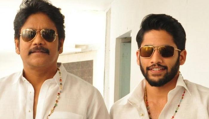 'బంగార్రాజు' అప్డేట్.. అక్కినేని ఫ్యాన్స్కు ఇది ఖచ్చితంగా గుడ్ న్యూస్-Movie-Telugu Tollywood Photo Image