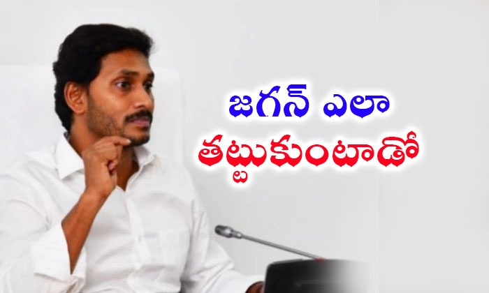 All Ap Parties Are Focus On Ys Jagan Mohan Reddy