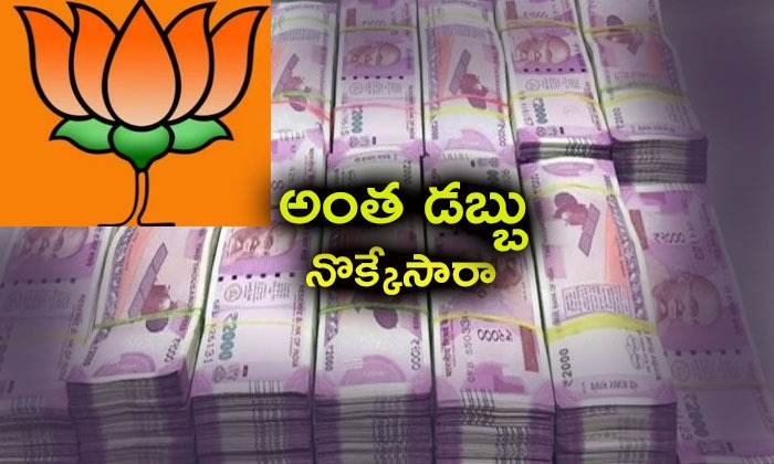 Bjp Leaders Angry On Ap Local Bjp Leaders