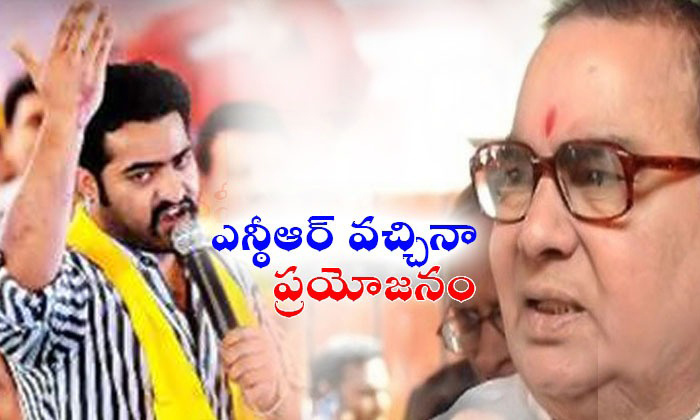 Nadendla Bhaskar Rao Comments On Junior Ntr