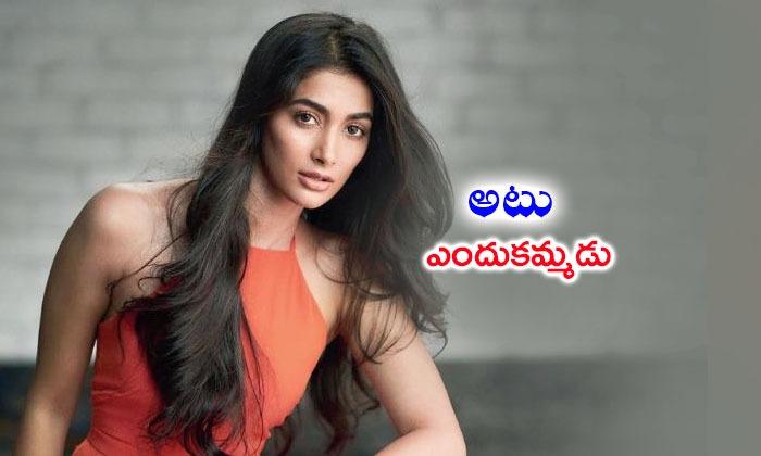 Pooja Hegde Steps In Bollywood