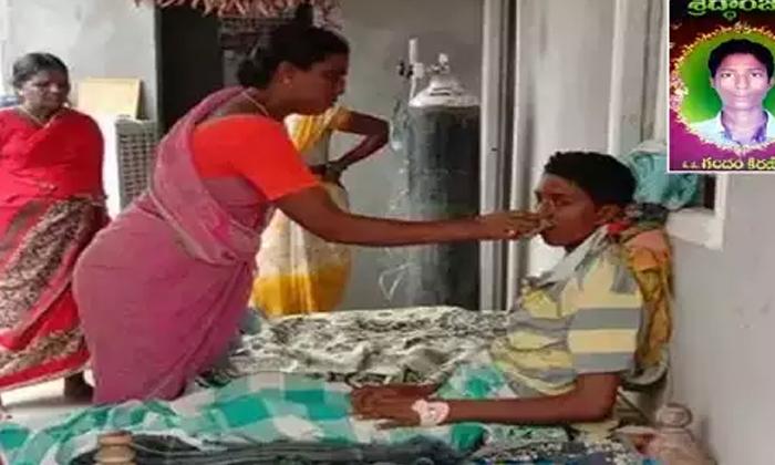 ఆ తల్లి కన్నీటికి కరిగిన దేవుడు, ఆమె కొడుకును బతికించాడు (సూర్యాపేటలో బ్రెయిన్డెడ్ కుర్రాడు లేచాడు)-General-Telugu-Telugu Tollywood Photo Image