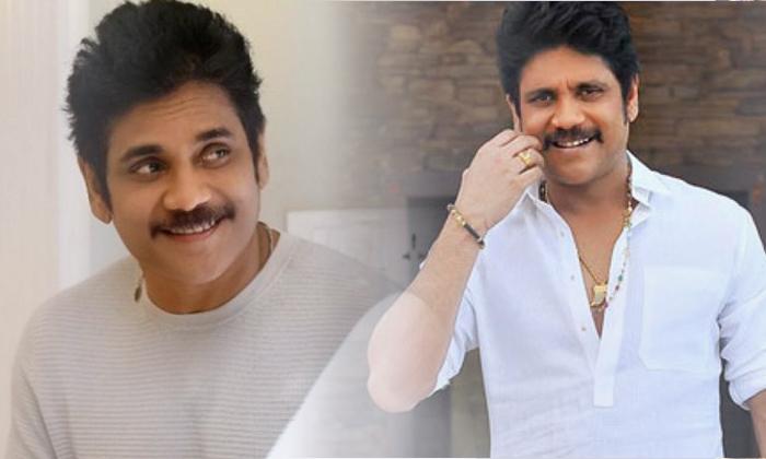'మన్మధుడు 2' తర్వాత నాగార్జున తీసుకున్న నిర్ణయం ఏంటో తెలుసా-Movie-Telugu Tollywood Photo Image