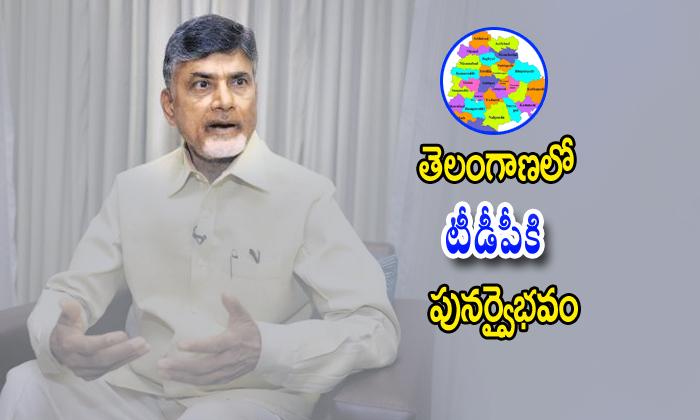 Chandrababu Plan To Reestablish Telugudesham Party In Telangana