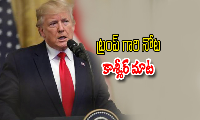 Donald Trump Offers Mediate On Kashmir Issue