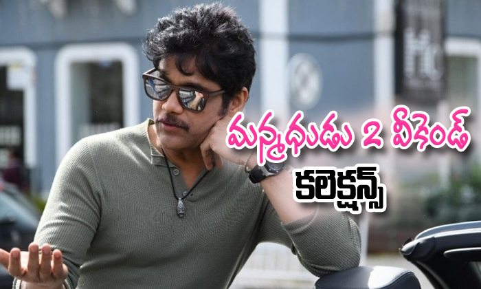 Manmadhudu 2 First Week Box Office Collections
