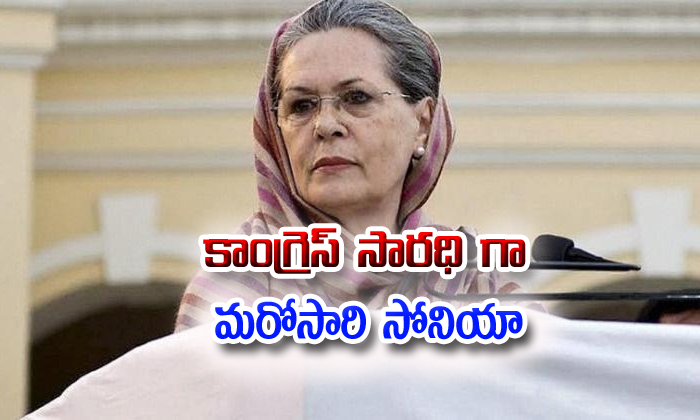 Sonia Gandhi Appointed As Interim Congress Chief