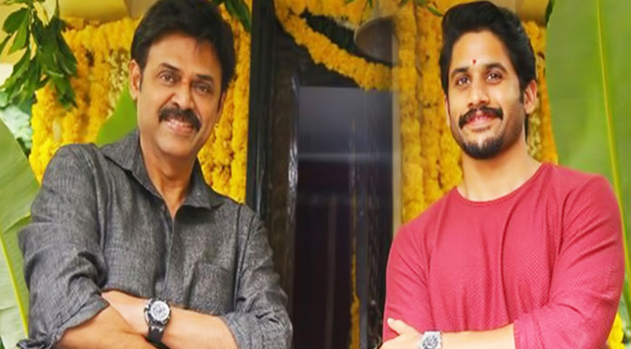 Venky Mama Movie Heavy Budget - Telugu Tollywood Movie Cinema Film Latest News Venky Mama Movie Heavy Budget -