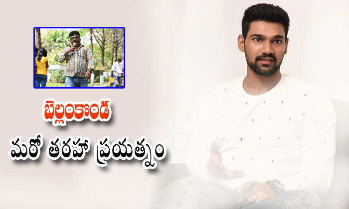 Bellamkonda Sai Srinivas Next Movie Doing With Nakkina Trinadha Rao-Bellamkonda Nakkina Rao Rakshashudu Srinivas Getting Huge Hit Rakshashudu Tollywood