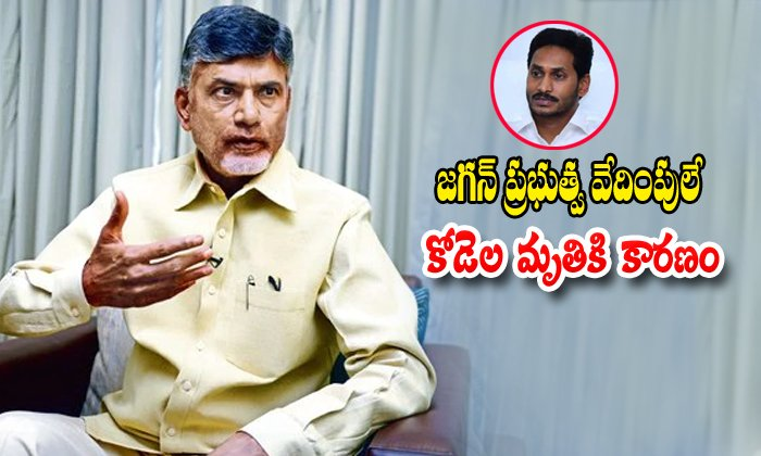 Chandrababu Naidu Says Ys Jagan Government Is The Reason