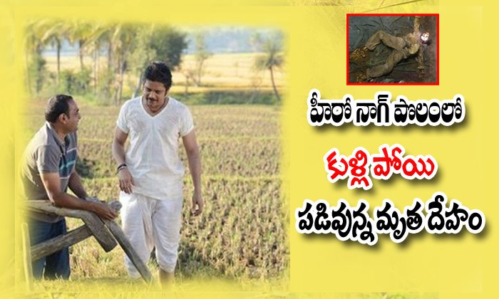 Dead Body Found In Akkineni Nagarjuna Farm Land-Akkineni Akkineni Land Bigg Boss Telugu Nagachaitanya Samantha