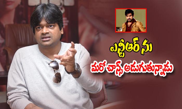 TeluguStop.com - Harishshankar Wants A Film With Jr Ntr Valmiki