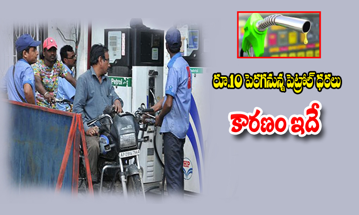 In 2020 Petrol Prise Will Grow Up