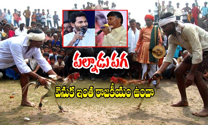 What Is The Political Issue In Palnadu Fighting
