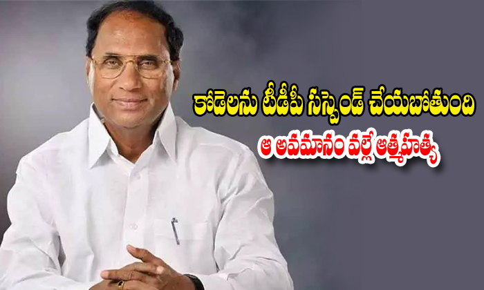 Ycp Party Leaders Abou On Tdp Party About On Kodela Sivaprasad
