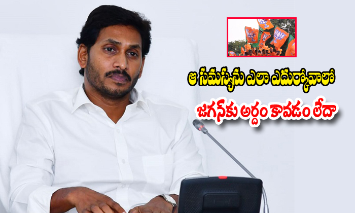 Ys Jagan Wants To Try Ap Special Status From Bjp Government