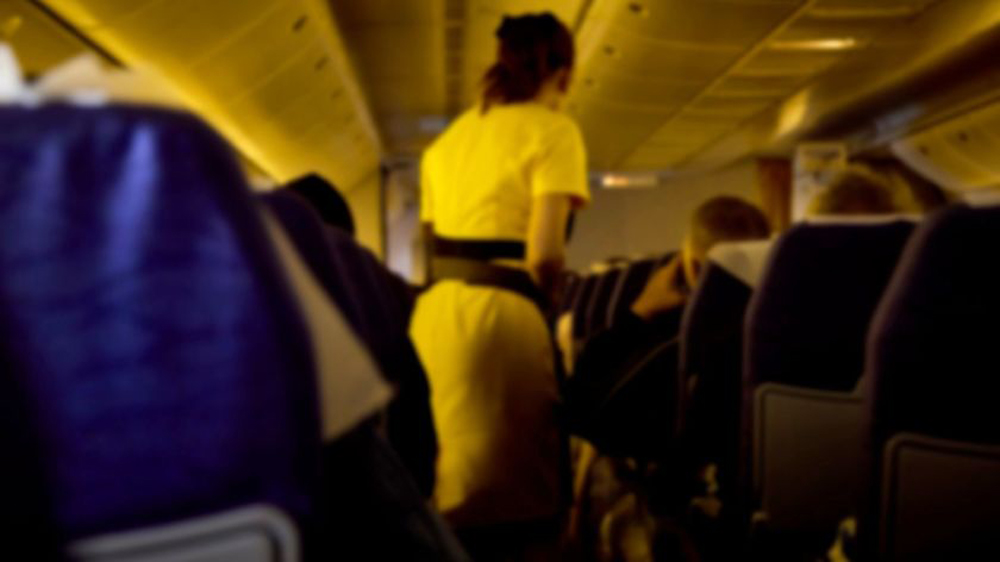 Telugu Airline, All Airline Customer Service, Nri, Telugu Nri News Updates-