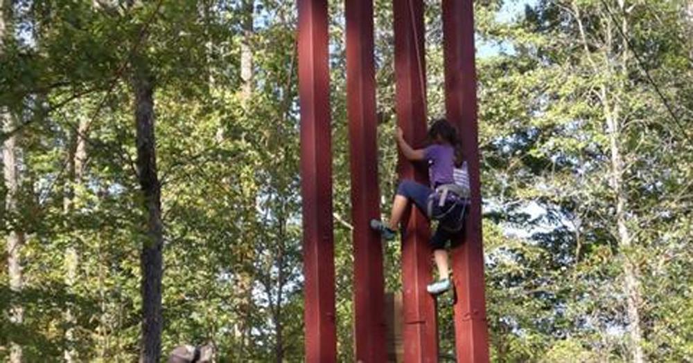 Telugu 8 Years Girl Climb Border Wall, America-mexico Border Wall, Nri, Ric Vebar, Telugu Nri News Updates, రిక్ వెబర్-