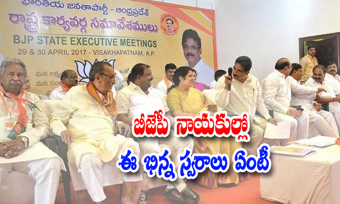 Ap Bjp Leaders Different Voice Speech About Tdp And Chandrababu Naidu