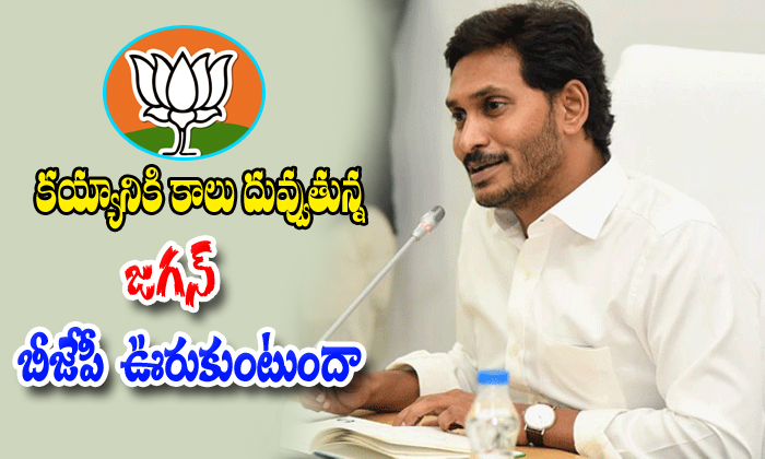 Ap Bjp Party Shows The Mistakes Against The Jagan Governament