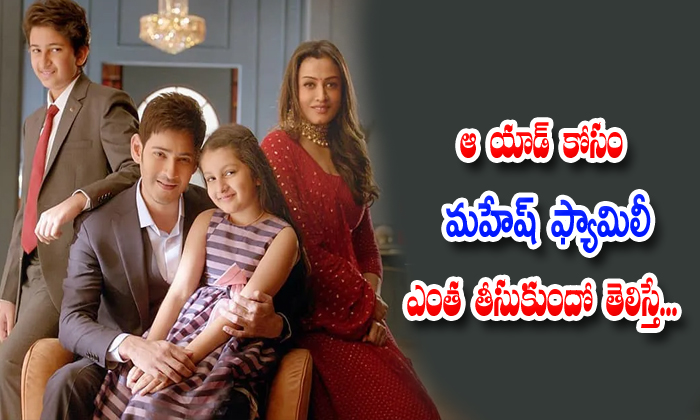 How Much Money Take Mahesh Babu Family In Surya Developers Ad