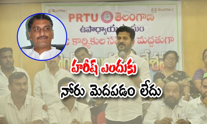 Revanth Reddy Comments On Harish Rao And Cm Kcr