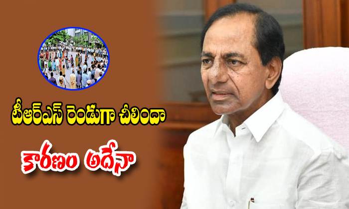 Trs Party Dived In Two Parts What Is The Reason