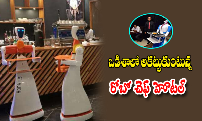 TeluguStop.com - Odishamade In India Robots To Serve Food At This Bhubaneswar Restaurant