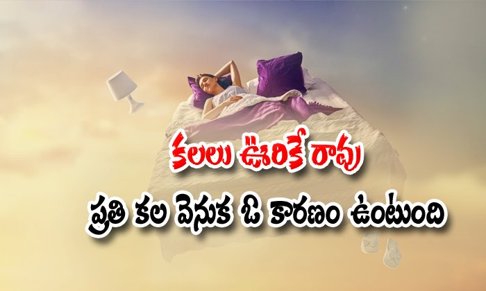 Ther Is Different Types Of Dreams And Which Is Different Reasons-dreams Are Comes True,phone Or Computer Telugu Viral News Ther Is Different Types Of Dreams And Which Reasons-dreams Are Comes True Pho-Ther Is Different Types Of Dreams And Which Reasons-Dreams Are Comes True Phone Or Computer