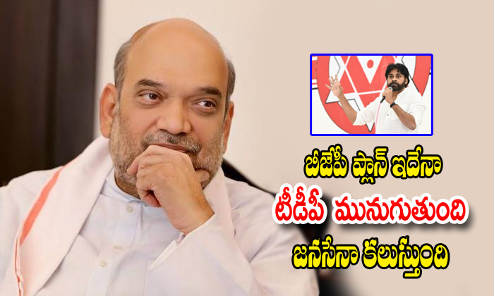 Amith Shah Plan To Janasena Merge In Bjp