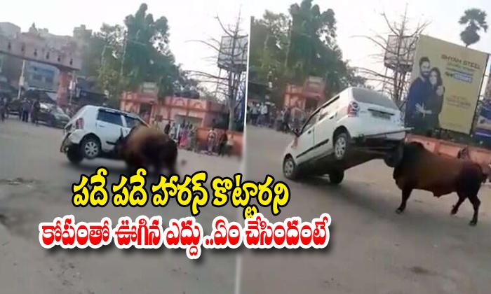 Angry Bull Overturns Car In Bihar
