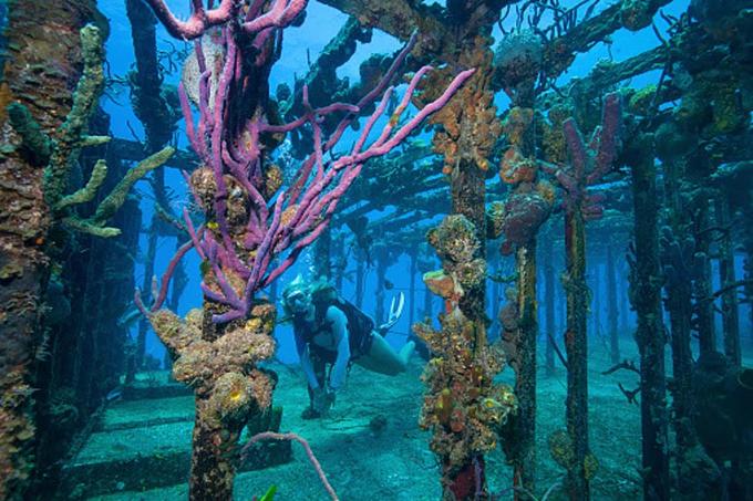 Telugu 300 Feet Of Water, Lake Michigan, Mysterious Ghost Ship, Richardson's Diving-