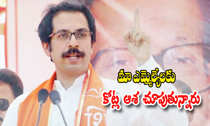 Siva Sena Chief Comments On Bjp Party Leaders