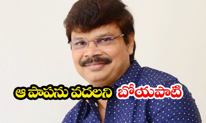 Boyapati Srinu Continuos Offer To Catherine Tresa-catherine Tresa,nbk106,telugu Movie News,tollywood Gossips Telugu Tollywood Movie Cinema Film Latest News-Boyapati Srinu Continuos Offer To Catherine Tresa-Catherine Tresa Nbk106 Telugu Movie News Tollywood Gossips