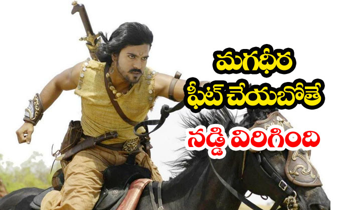 Man Tries To Jump Onto Horse Carriage Falls Down-horse Carriage,magadheera,man,viral Video Telugu Viral News Man Tries To Jump Onto Horse Carriage Falls Down-horse Magadheera Man Viral Video-Man Tries To Jump Onto Horse Carriage Falls Down-Horse Magadheera Man Viral Video