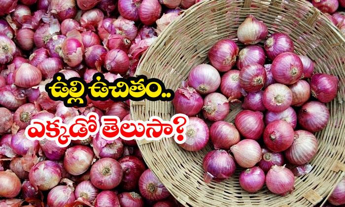 Onions On Purchase Of Clothes-mumbai,national News,onions,weird News Telugu Viral News Onions On Purchase Of Clothes-mumbai National News Onions Weird-Onions Free On Purchase Of Clothes-Mumbai National News Onions Weird