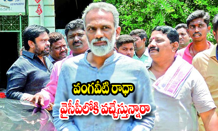 Vangaveeti Radha Try To Comes In Ycp Party