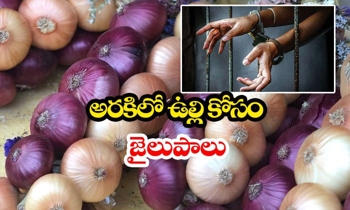 Woman Arrested For Onion Theft-crime News,onion,onion Theft,punjab News,woman Telugu Viral News Woman Arrested For Onion Theft-crime News Onion Theft Punjab Woman-Woman Arrested For Onion Theft-Crime News Onion Theft Punjab