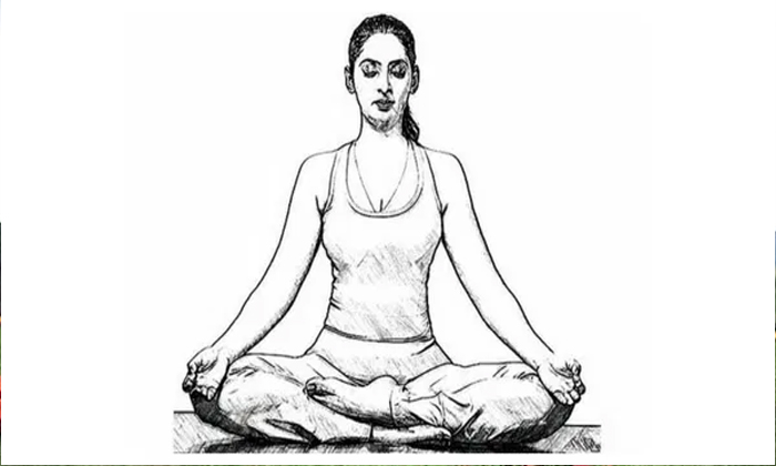 Telugu Benefits Of Padma Yoga Asanam You Must Do This Asana, Now A Days Yoga Is Veart Importent To Humans, Padma Yoga Asanam, Telugu General News, Telugu Viral News-Telugu Health