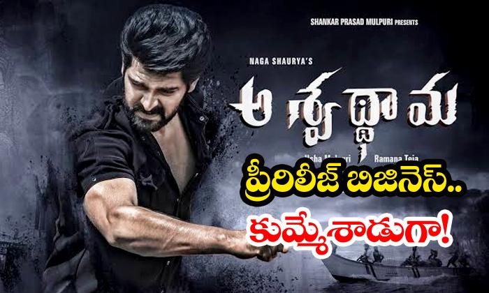 Aswathama Pre Release Business Highest For Naga Shourya-Naga Shourya Pre Telugu Movie News