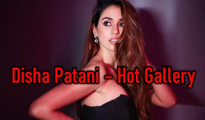 Disha Patani Raises Heat – Hot Gallery-Latest News English-Telugu Tollywood Photo Image