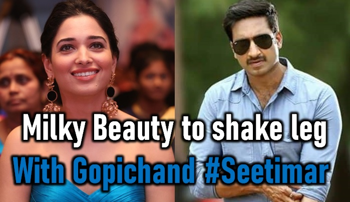 Heroine Confirmed For Gopichand Sampath Nandi Movie!-gopichand Sampath Nandi Movie,gopichand Seetimar,tamannah Bhatia New Movie-Telugu Trending Latest News Updates-Heroine Confirmed For Gopichand Sampath Nandi Movie!-Gopichand Movie Gopichand Seetimar Tamannah Bhatia New