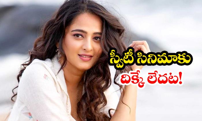 No Buyers For Anushka Nishabdam Movie-Bollywood Movie News Nishabdam Telugu