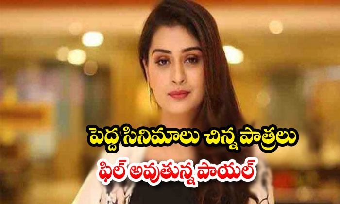 Payal Rajput Feel Bad On His Role In Latest Movies-Payal Role Movies Tollywood Venky Mama