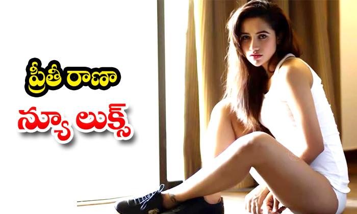 Preeti Rana Hot Photos - Telugu , Preeti Rana Hot Pics, Preeti Rana Latest Hot Pics, Preeti Rana Latest Photos, Preeti R High Resolution Photo